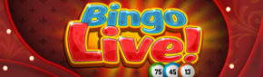 PlayPhone - Bingo LIVE!
